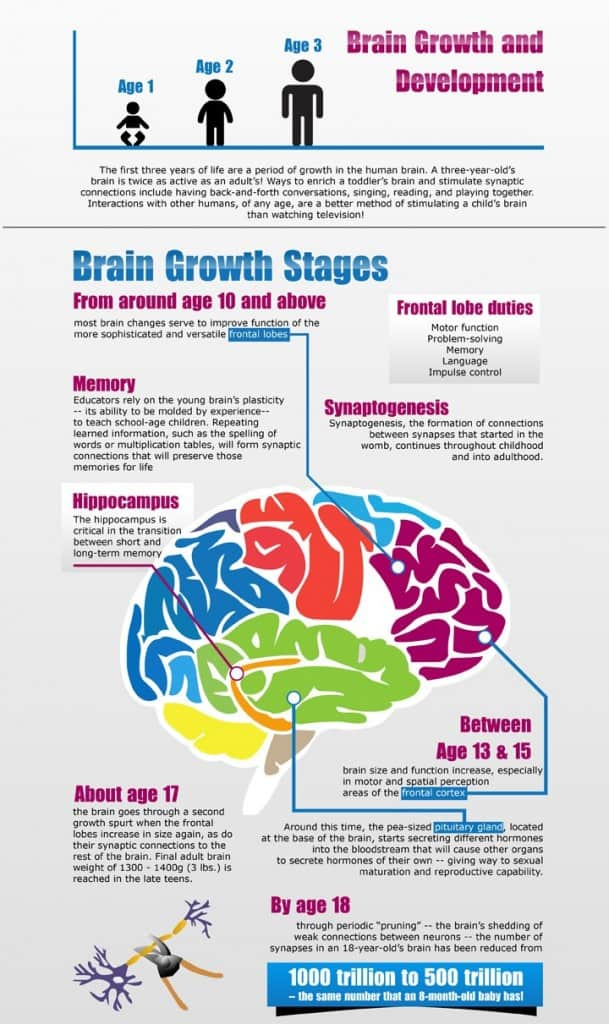 Teenage Addiction and Brain Development