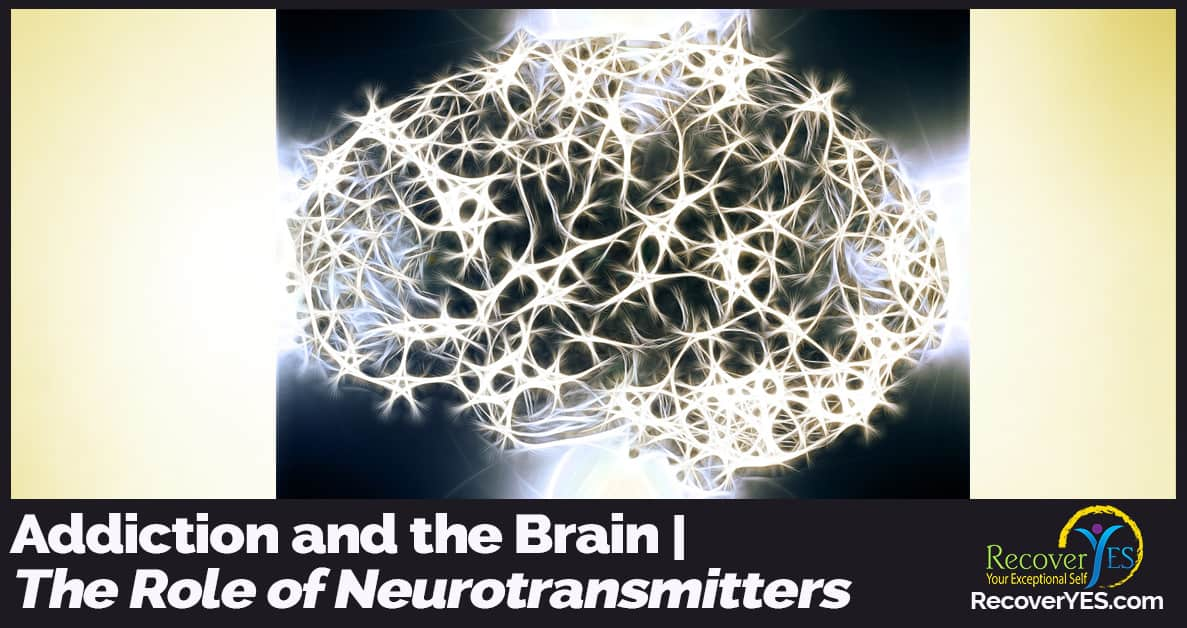 the role of neurotransmitters in the human body Acetylcholine's role in the brain for memory, concentration, and neuron growth how this neurotransmitter functions + supplements to prevent deficiency.